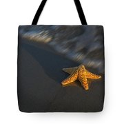 Starfish On The Beach Tote Bag