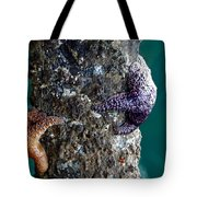Starfish Under The Pier Tote Bag
