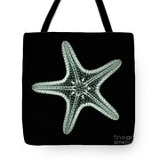 Starfish X-ray Tote Bag