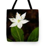 Starflower Tote Bag by Christina Rollo