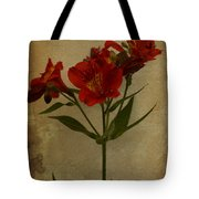 Stargazers On Paper Tote Bag