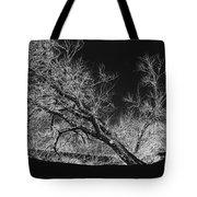 Starkly Tote Bag by Betty LaRue