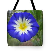 Starry Blue Enchantment Tote Bag