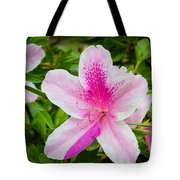 Starry Nature Tote Bag