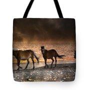 Starry Night Beach Horses Tote Bag