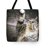 Starry Night Kitty Style - Featured  In Comfortable Art Group Tote Bag