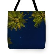 Stars At Night With Palm Tree Thalpe Tote Bag