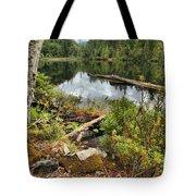 Starvation Lake Reflections Tote Bag