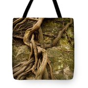 State Park Roots Tote Bag