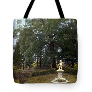 Statue And Tree Tote Bag