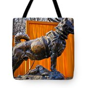Statue Of Balto In Nyc Central Park Tote Bag