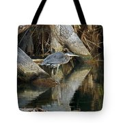 Statues Tote Bag by Skip Willits