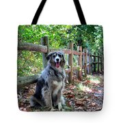 Stay Aussie Tote Bag