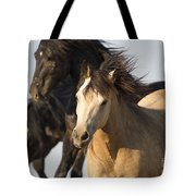 Stealing The Mare Tote Bag