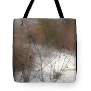 Steamy Window Tote Bag