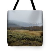 Steens Mountain Landscape - No 2a Tote Bag