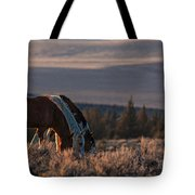 Steens Sundown Tote Bag