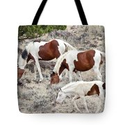 Steens Wild Paints Tote Bag