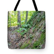 Steep Incline Around The Mountain Tote Bag