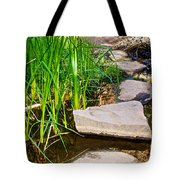 Stepping Stones Across Creek On Lower Palm Canyon Trail In Indian Canyons Near Palm Springs-ca Tote Bag