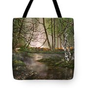 Stepping Stones On Cannock Chase Tote Bag