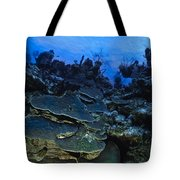 Steps Of The Sea Tote Bag