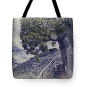 Steps To Beauty On Moro Rock Tote Bag
