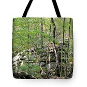 Sticks And Stones Along The Way Tote Bag