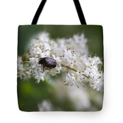 Stiff Dogwood Wildflowers And Beetle Tote Bag