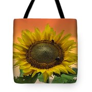 Still Busy At Sunset Tote Bag