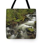 Still Creek Mt Hoodoregon Tote Bag