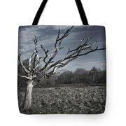 Still In Winter Mode Tote Bag