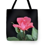 Still Life Portrait Of A Rose Tote Bag
