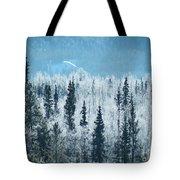 Still Valley  Tote Bag