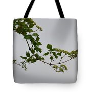 Still Water Reflection Tote Bag
