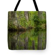Stillness Swamp Tote Bag