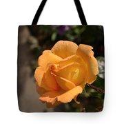 Stirling Rose Tote Bag