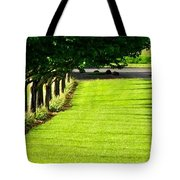 Stoller Drive 24010 Tote Bag