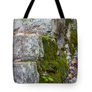 Stone And Moss Tote Bag
