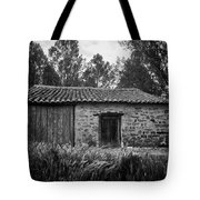 Stone Building Tote Bag