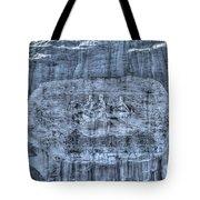 Stone Mountain - 1 Tote Bag