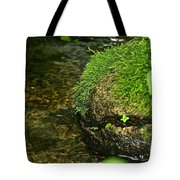 Stone Mouth Tote Bag