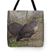 Stone Partridges Tote Bag