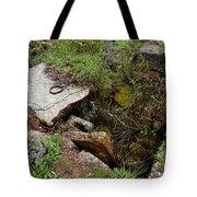 Stone Slid Away Tote Bag