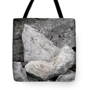 Stone Tooth Tote Bag