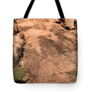 Stoned Leap Frog Tote Bag
