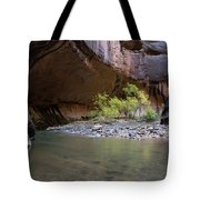 Stones Underwater, Zion National Park Tote Bag