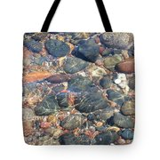 Stony Beauty Tote Bag