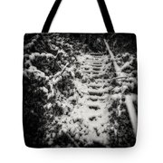 Stony Steps Covered With Snow Tote Bag