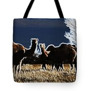 Stop And Stare V3 Tote Bag